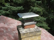 Allstate Animal Control chimney cap