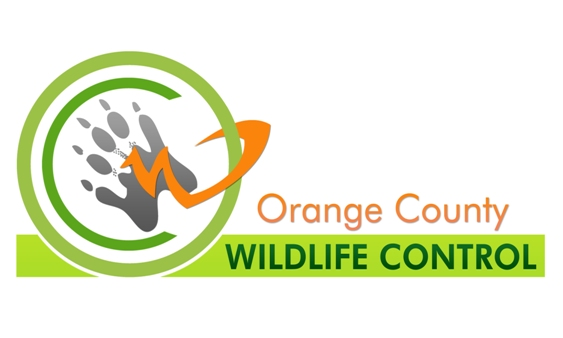 Orange County Wildlife logo