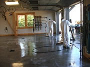 Allstate Animal Control photo scrub down garage for Hauta Virus