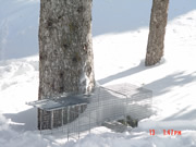 Allstate Animal Control photo porcupine cage trap